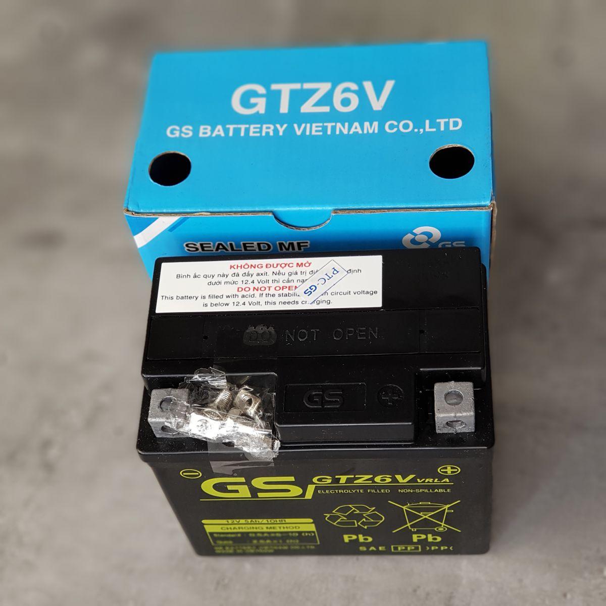 binh-Ac-quy-xe-may-GS-GTZ6V-2